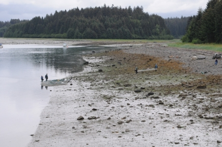 Low Tide in Bartlett Cove